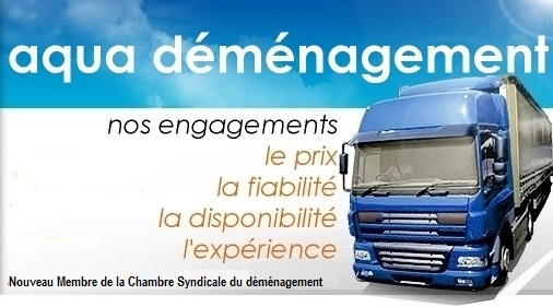 demenagement paris